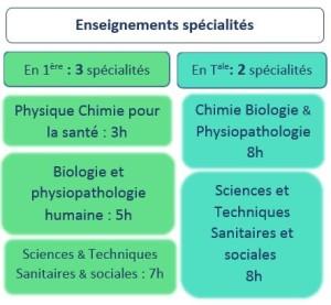 ENSEIGNEMENT DE SPECIALITES